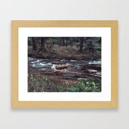 Where river meets ocean Framed Art Print