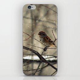 Winter friend. iPhone Skin