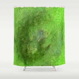 The Midwest Files: Find Frog the Fraud Shower Curtain