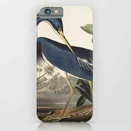 Louisiana Heron from Birds of America (1827) by John James Audubon, etched by William Home Lizars iPhone Case