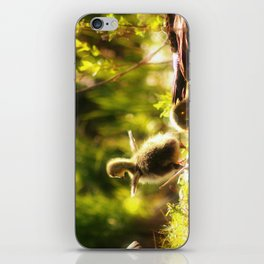Ready to fly iPhone Skin