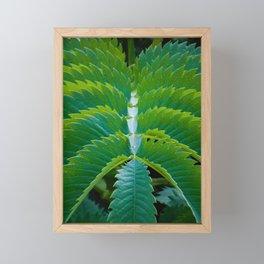 Symmetry Framed Mini Art Print