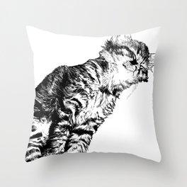 Whisker Dreams Throw Pillow