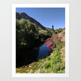 Silent Andalusian Riverside Art Print