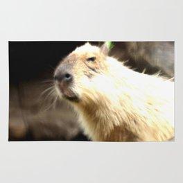 sweet capybara  Rug