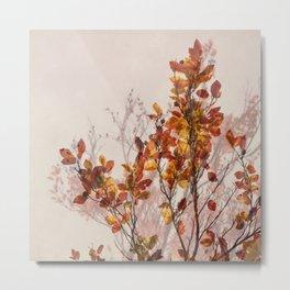 autumn symphonies II Metal Print