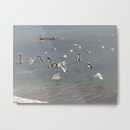 flying by the sea Metal Print