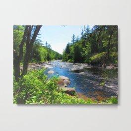 ouareau- peacefull nature Metal Print
