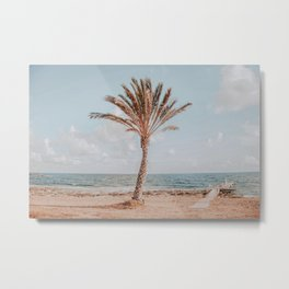 One Palm Tree V Metal Print