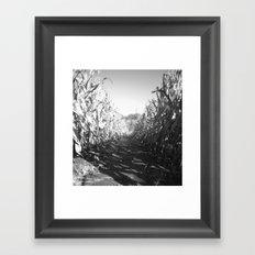 Rows Framed Art Print