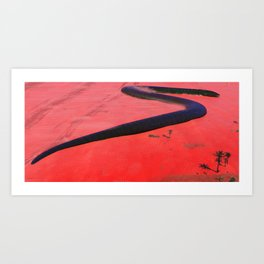 Small worm on the Cielago Depression Art Print