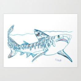 Tiger Shark II Art Print