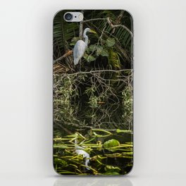 Great White Egret on a Branch iPhone Skin