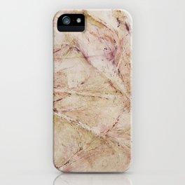 Twigs iPhone Case