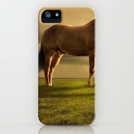 Amazing Fantasy Woman Idyllic Meadow Giant Horse Surreal Ultra HD iPhone Case