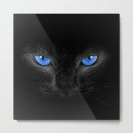 Black Cat in Blue Eyes Metal Print