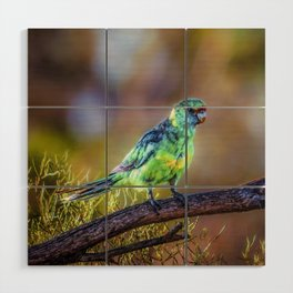 Mallee Ringneck Parrot Wood Wall Art