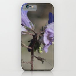 Canterbury Bell Coachella Wildlife Preserve iPhone Case