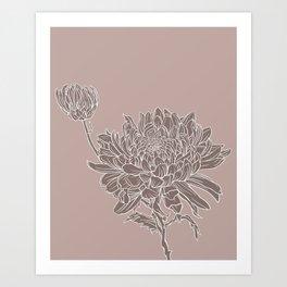 Chrysanthemum Purple Art Print