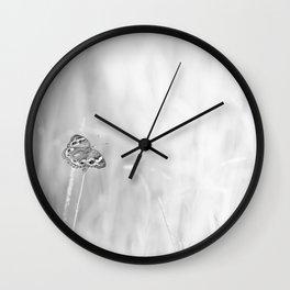 Junonia coenia, Common Buckeye Butterfly Black and White Wall Clock