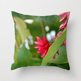 belizean flower Throw Pillow