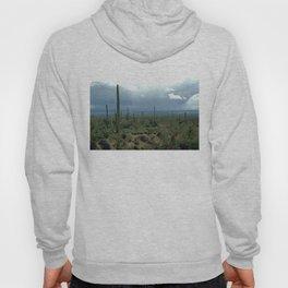 Arizona Desert and Cactuses Hoody