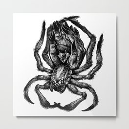Like a Fly Caught in a Human Hand (Spider Edition) Metal Print