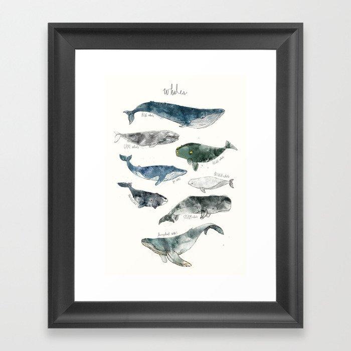 Whales Gerahmter Kunstdruck