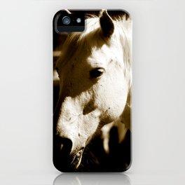 White Horse-Sepia iPhone Case