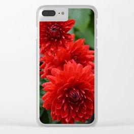 Fresh Rain Drops - Red Dahlia Clear iPhone Case