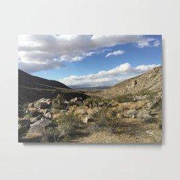 Mojave Vista Metal Print