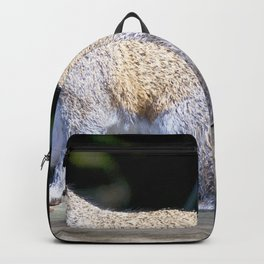 Watercolor Gray Squirrel 01, Gulf Island Beach, Florida Backpack