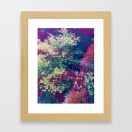 Infinite Abundance Photography Framed Art Print