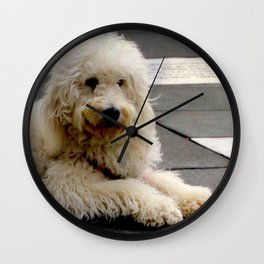 See My New Paw-dicure? Wall Clock