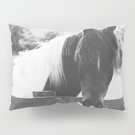 Painted Horse  Pillow Sham