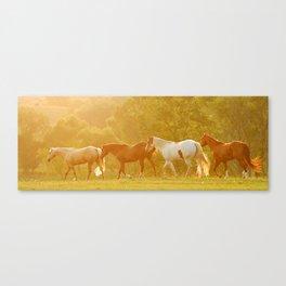 Horses @ Sunset Canvas Print