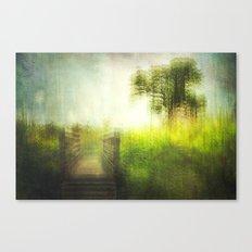 connie's backyard 02 Canvas Print