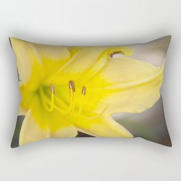 Yellow Blooming Canna Flower Nature Floral Fine Art Framed Lustre Wall Art Print  Rectangular Pillow