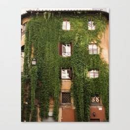 The Overgrowth Canvas Print