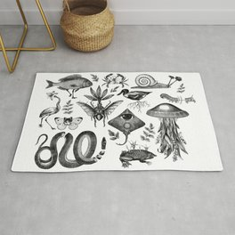 Curiosity Cabinet Collection Rug