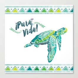 Costa Rica Turtle Canvas Print