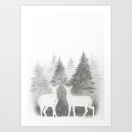 Albino Deer and Pine Forest Art Print