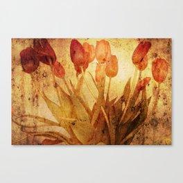 Tulpen Treffen Canvas Print