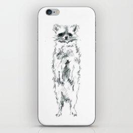 Wild Racoon iPhone Skin