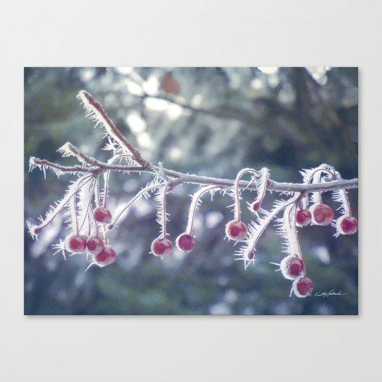 Berry Ice Freeze Canvas Print