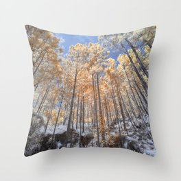 winter forest in the morning Throw Pillow