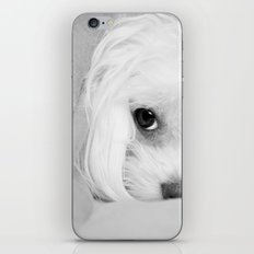 Sweet dreams iPhone & iPod Skin