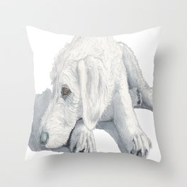 Labradoodle Pup Ginger Throw Pillow