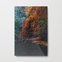Nature on fire Metal Print