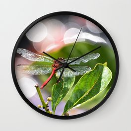 Red Dragonfly on leaf with bokah Wall Clock